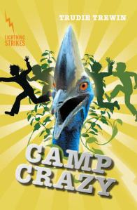 camp crazy cover